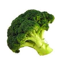 Broccoli | Indonesisch-Culinair.nl
