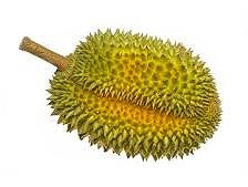 Durian | Indonesisch-Culinair.nl