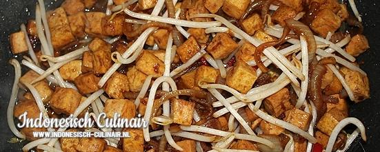 Tahu Tauge | Indonesisch-Culinair.nl