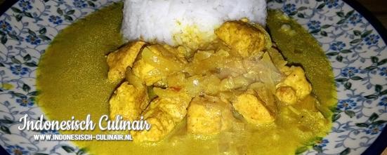 Ayam Kari Tiga | Indonesisch-Culinair.nl
